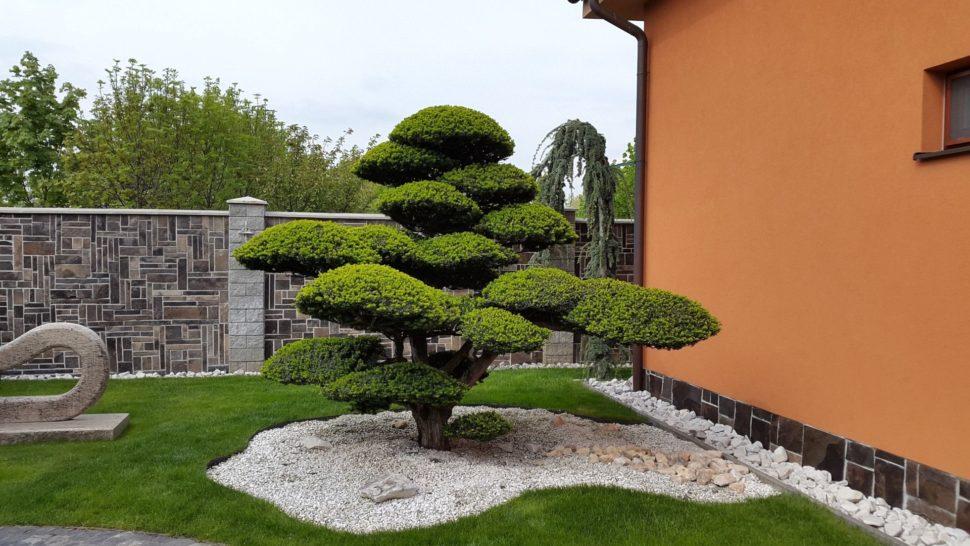 Záhrada Senec