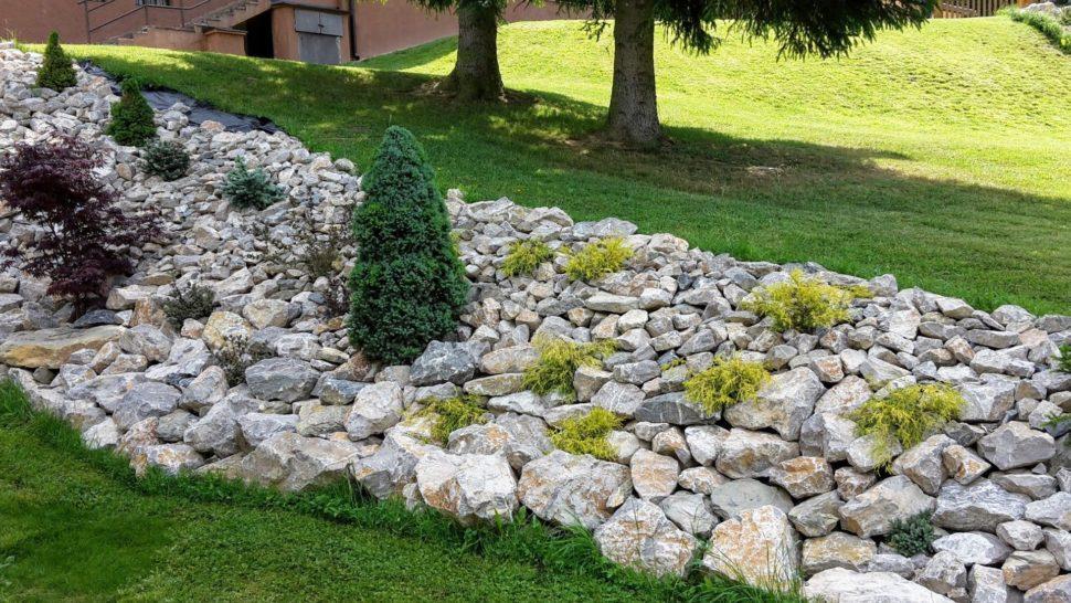 Záhrada Trenčianske Teplice ihličnany